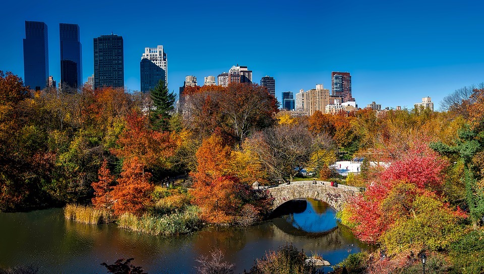 59f-central-park-1804588-960-720-593